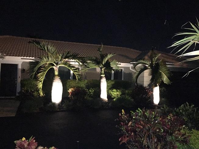 Nightlight installation